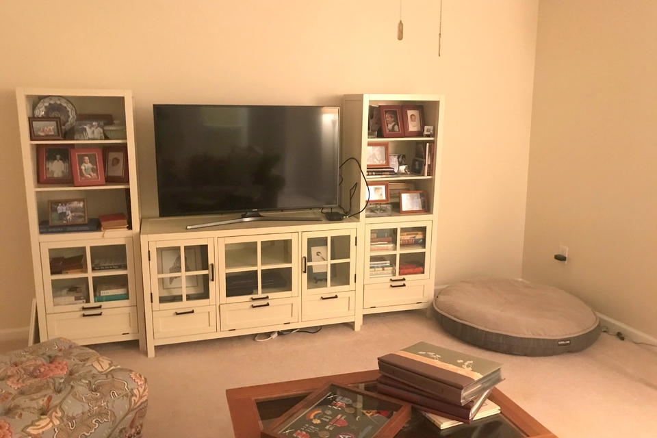 Media Room - Entertainment Center, Couch