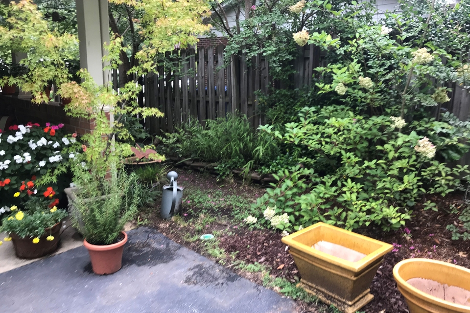 Exterior - Beautiful Yard with gardening space