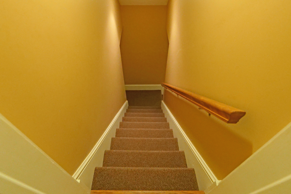 Stairs leading to basement - carpeted